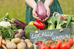 Female hands holding an aubergine above table of vegetables